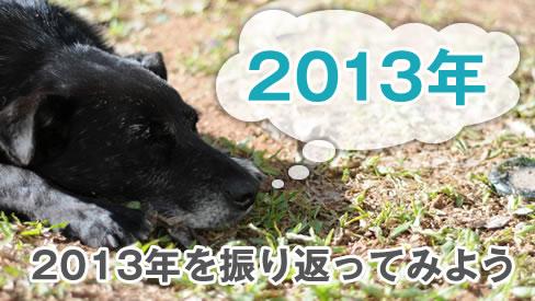 2013年もあと1日!2013年を振り返ってみよう!