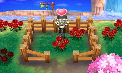 青いバラを心待ちにする村長改め花農家