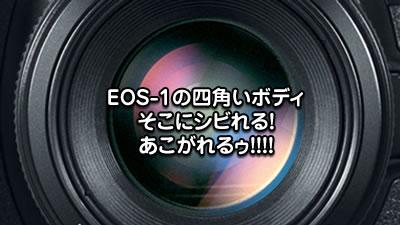 EOS-1の四角いボディ。そこにシビれる!あこがれるぅ