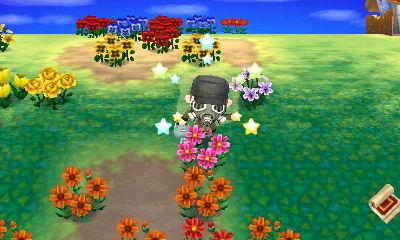 【とびだせ どうぶつの森】花農家の1日「ピンクのコスモスが咲きました」