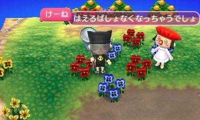 花の並べ方には工夫が必要