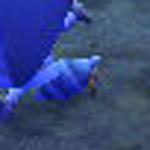 【とびだせ どうぶつの森】けーねのとび森日記RX PART.3「ウザいヤドカリを南の島から排除しよう!」 | ドウラク